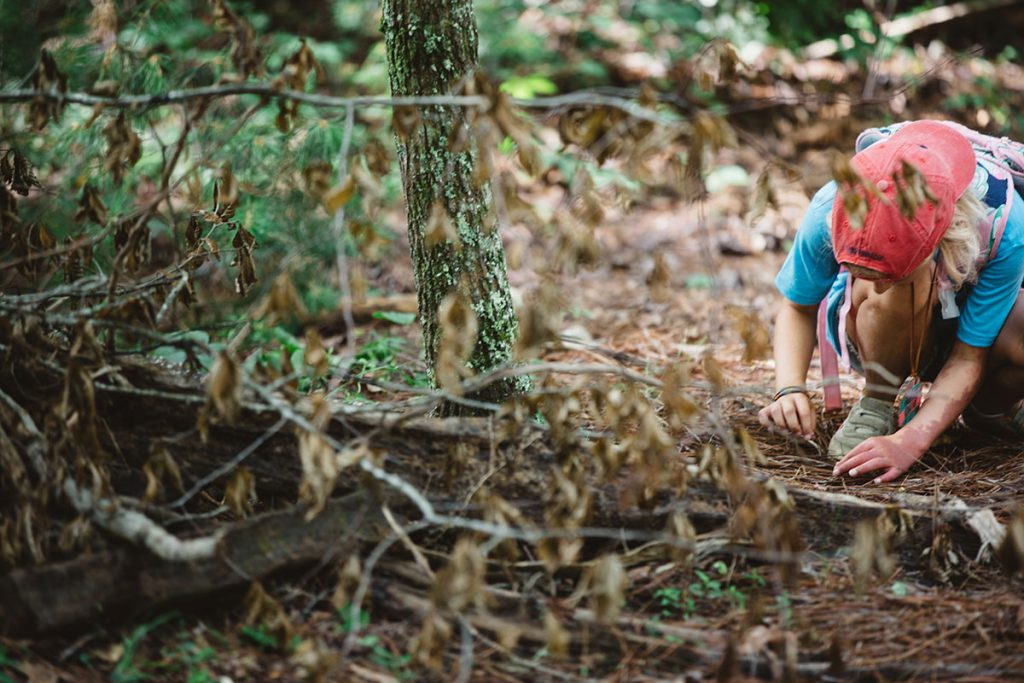 girl looking at sticks on ground in forest